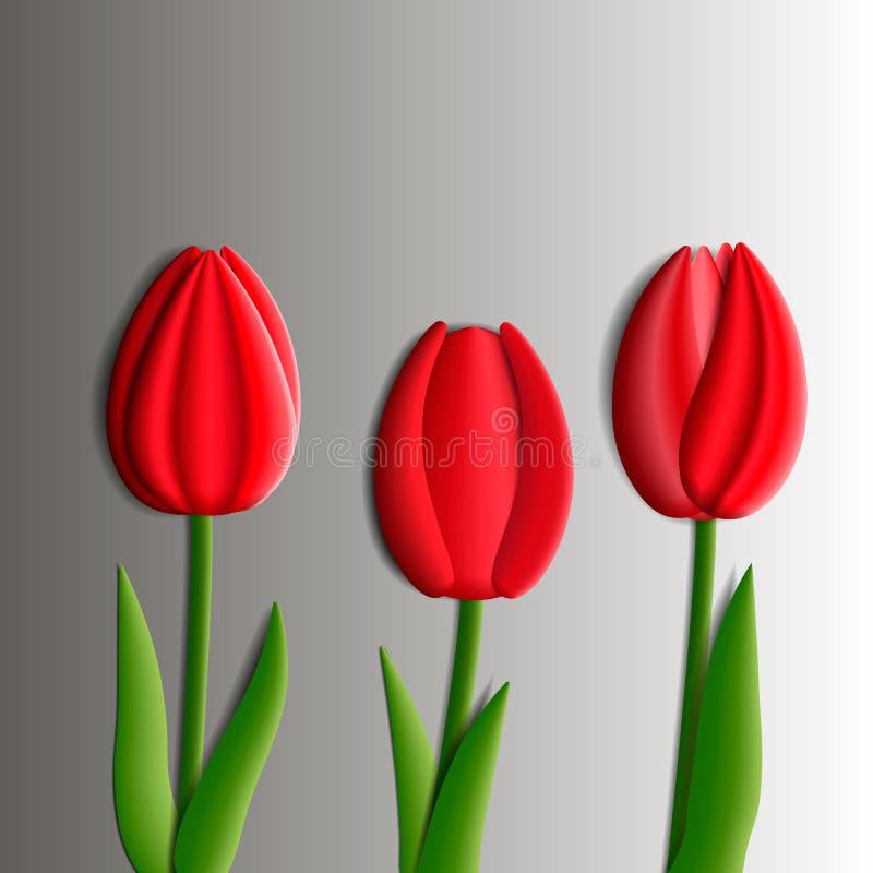 Στοιχεία σχεδίου - σύνολο κόκκινων λουλουδιών τουλιπών τρισδιάστατων ελεύθερη απεικόνιση δικαιώματος