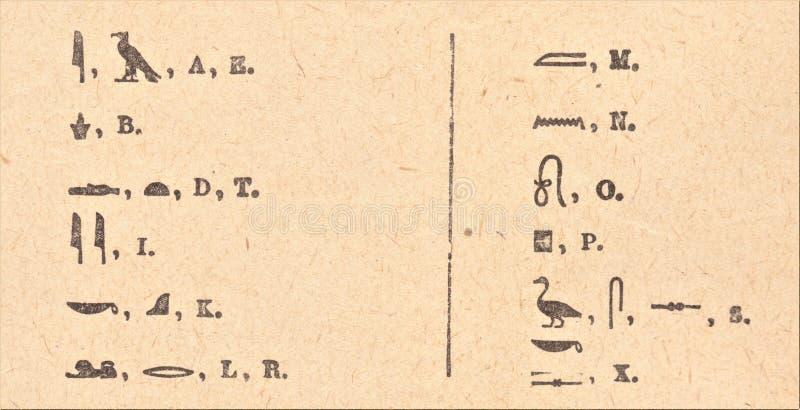 Στοιχειώδες αιγυπτιακό αλφάβητο διανυσματική απεικόνιση