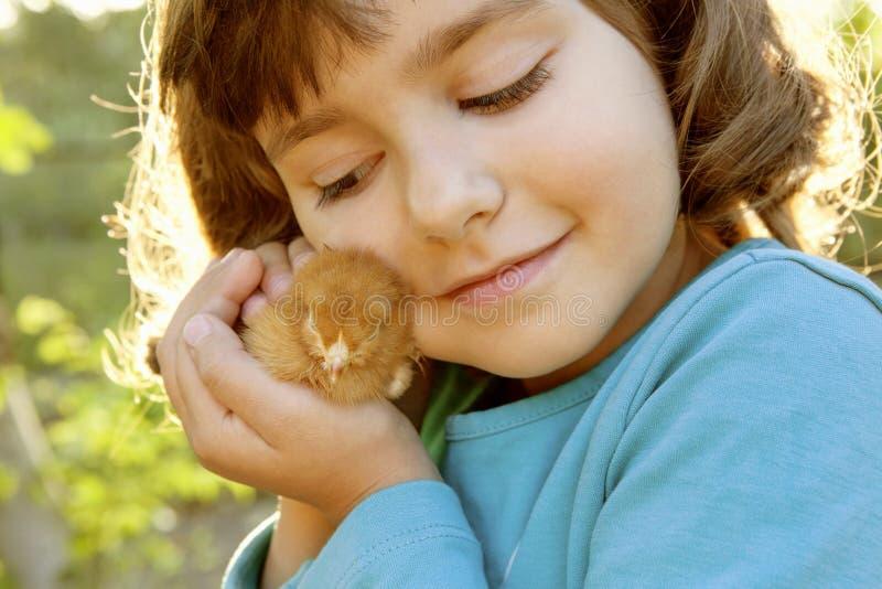 Στοργικό κοτόπουλο εκμετάλλευσης κοριτσιών στα χέρια όπως έναν θησαυρό στοκ εικόνες με δικαίωμα ελεύθερης χρήσης