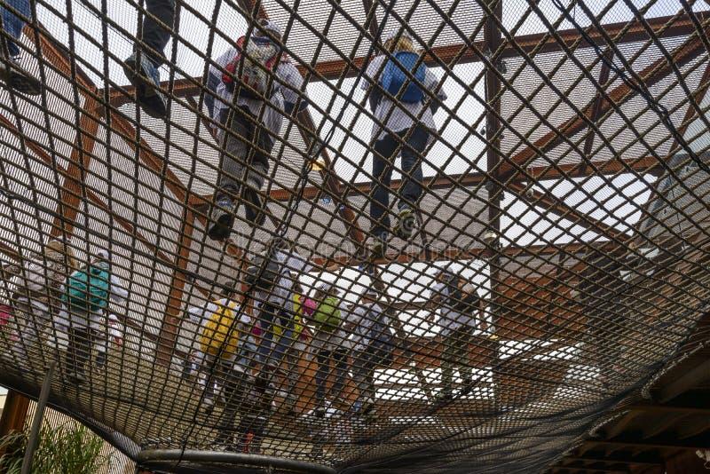 Στο δίχτυ μέσα στο περίπτερο της Βραζιλίας, EXPO 2015 Μιλάνο στοκ φωτογραφία
