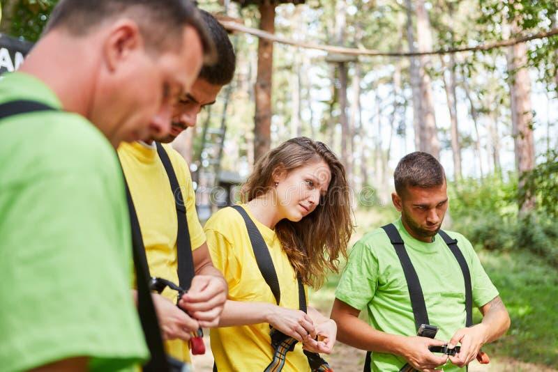 Στο δάσος αναρρίχησης οι αρχάριοι λαμβάνουν μια κατάρτιση στοκ εικόνα με δικαίωμα ελεύθερης χρήσης