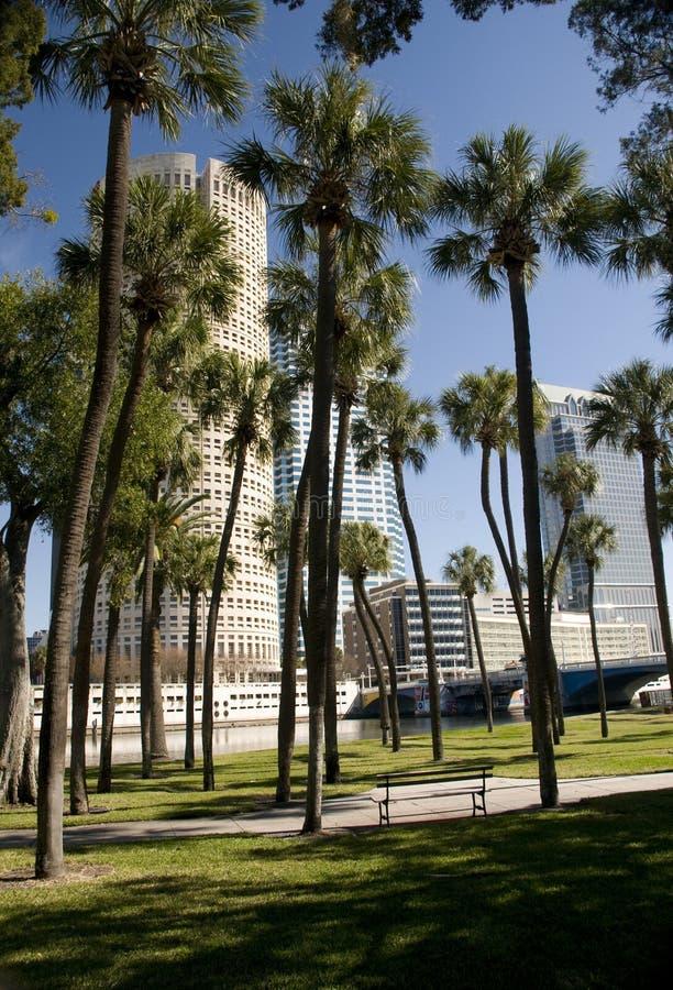στο κέντρο της πόλης πάρκο Τάμπα στοκ εικόνα με δικαίωμα ελεύθερης χρήσης