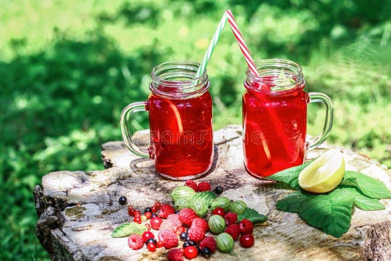 Στο ξύλινο κολόβωμα είναι πάγος - κρύα γυαλιά ποτών με το κοκτέιλ λεμονιών σμέουρων Πάγος χώρας - κρύο ποτό, με το κύπελλο αργίλο στοκ φωτογραφία με δικαίωμα ελεύθερης χρήσης