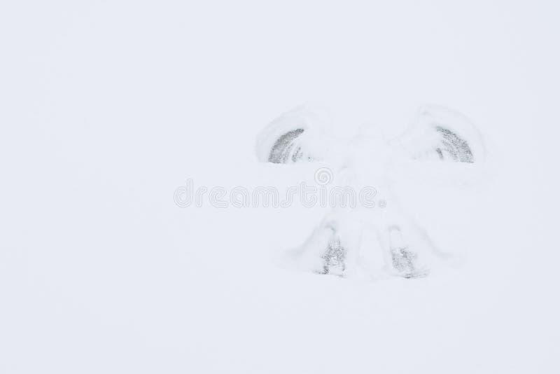 Στο σαφές υπόβαθρο του χιονιού που αφήνεται ένα ίχνος ενός αγγέλου, μια θέση για την επιγραφή σας στοκ εικόνα με δικαίωμα ελεύθερης χρήσης