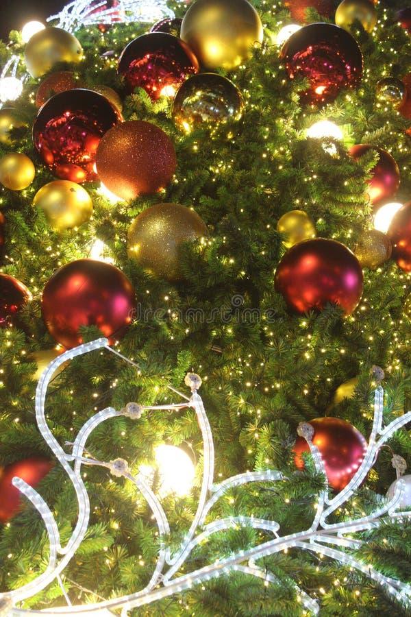 Στο φεστιβάλ Χριστουγέννων στοκ φωτογραφία με δικαίωμα ελεύθερης χρήσης