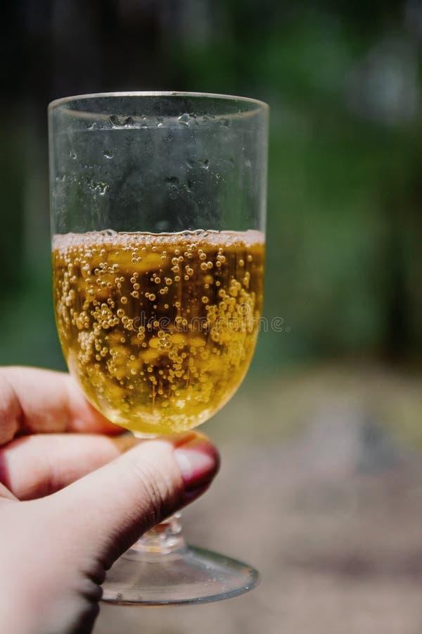 στο χέρι του ένα γυαλί κρασιού με μηλίτης-Aperol στο φως του ήλιου σε ένα κλίμα του πράσινου δασικού διαστήματος αντιγράφων στοκ εικόνα