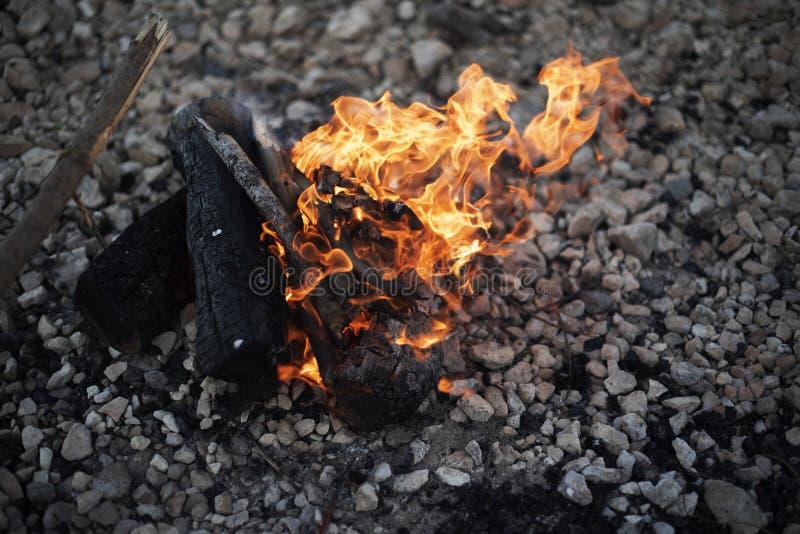 Στρατοπέδευση φωτιά στην παραλία στοκ εικόνες με δικαίωμα ελεύθερης χρήσης