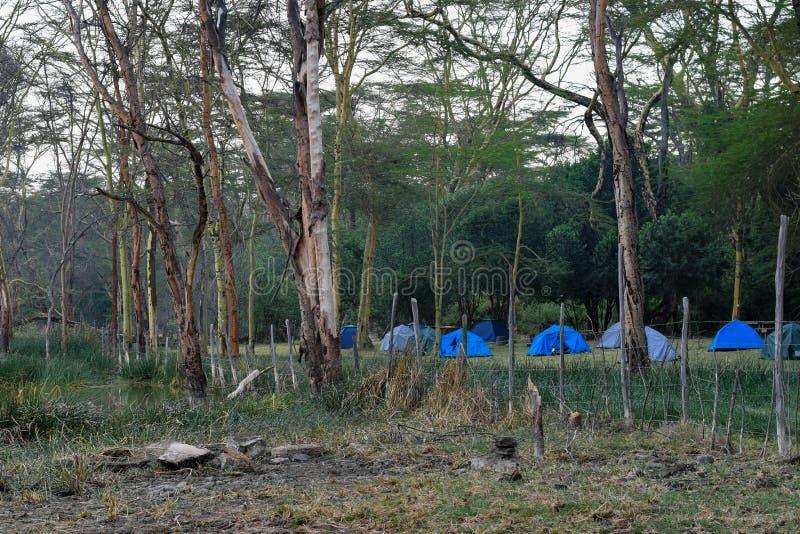 Στρατοπεδεύοντας στο Lakeshore, Naivasha στοκ φωτογραφία με δικαίωμα ελεύθερης χρήσης