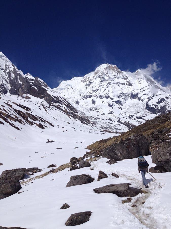 Στρατόπεδο βάσεων Annapurna - Νεπάλ, Ιμαλάια στοκ εικόνα