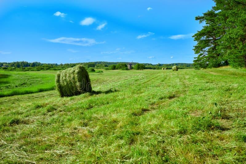 Στριμμένη θυμωνιά χόρτου στον τομέα Πανόραμα τομέων καλλιεργήσιμου εδάφους θυμωνιών χόρτου Άποψη αγροτικών τομέων agrisulture θυμ στοκ εικόνες με δικαίωμα ελεύθερης χρήσης