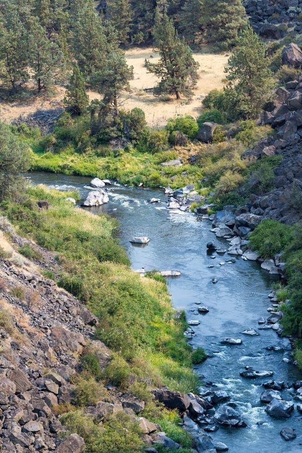 Στριμμένος ποταμός στο Όρεγκον στοκ εικόνες με δικαίωμα ελεύθερης χρήσης