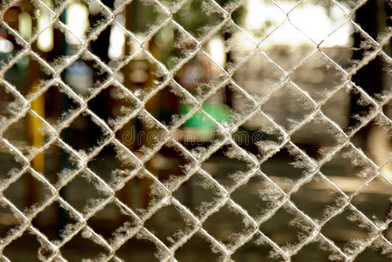 Στριμμένο υφαμένο πλέγμα μετάλλων που καλύπτεται με τη λεύκα κάτω σε μια θολωμένη κινηματογράφηση σε πρώτο πλάνο υποβάθρου περιφρ στοκ φωτογραφία