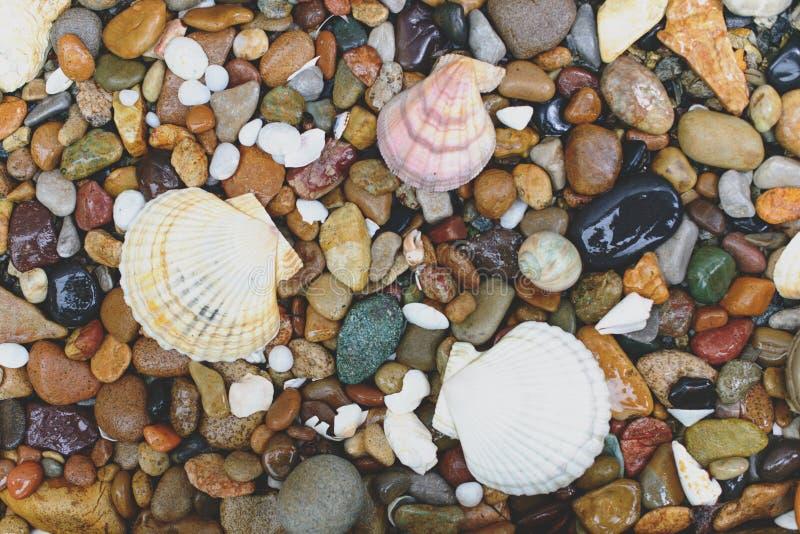 στρογγυλές πέτρες κοχυ στοκ εικόνα