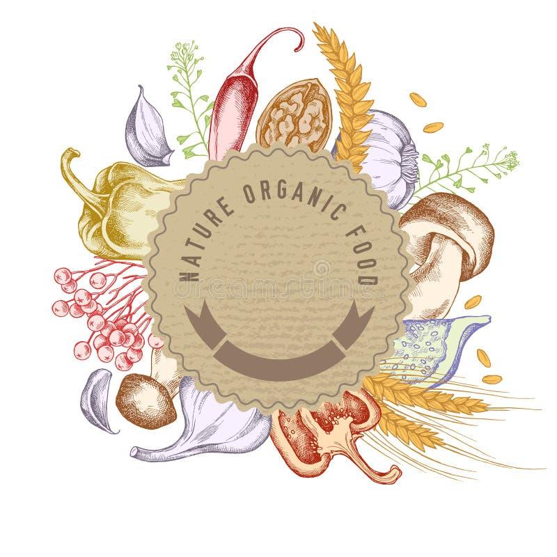 Στρογγυλό έμβλημα εγγράφου πέρα από τα τρόφιμα φθινοπώρου Συρμένη χέρι διανυσματική απεικόνιση διανυσματική απεικόνιση