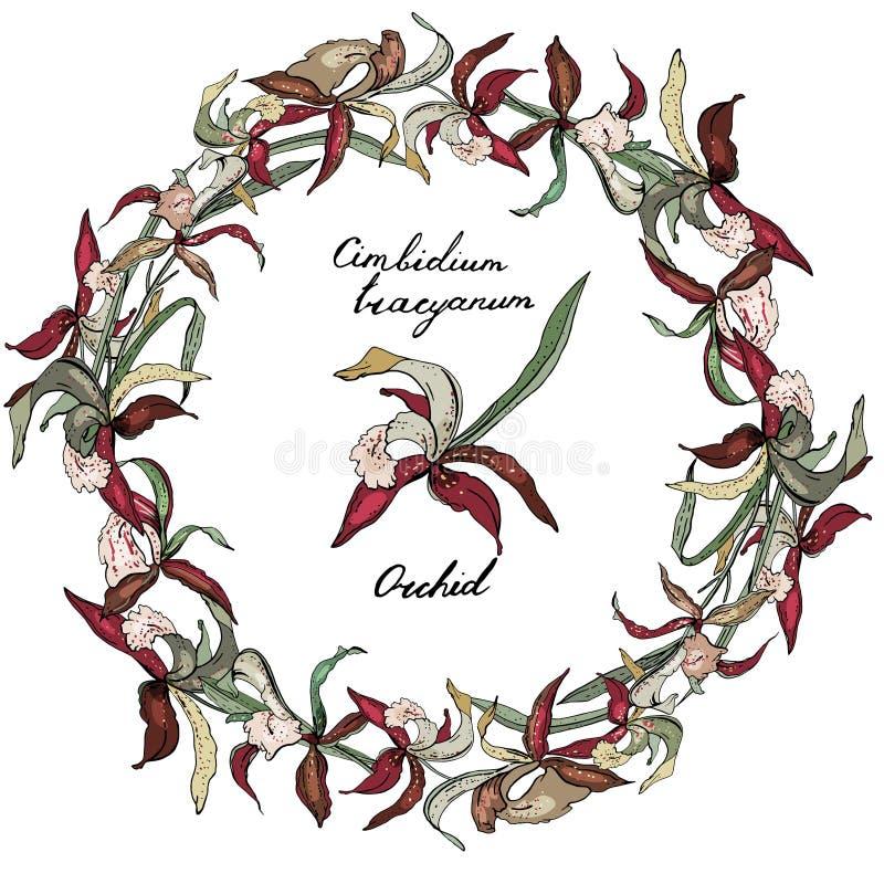 Στρογγυλό ρομαντικό floral πλαίσιο φιαγμένο από ορχιδέες ελεύθερη απεικόνιση δικαιώματος