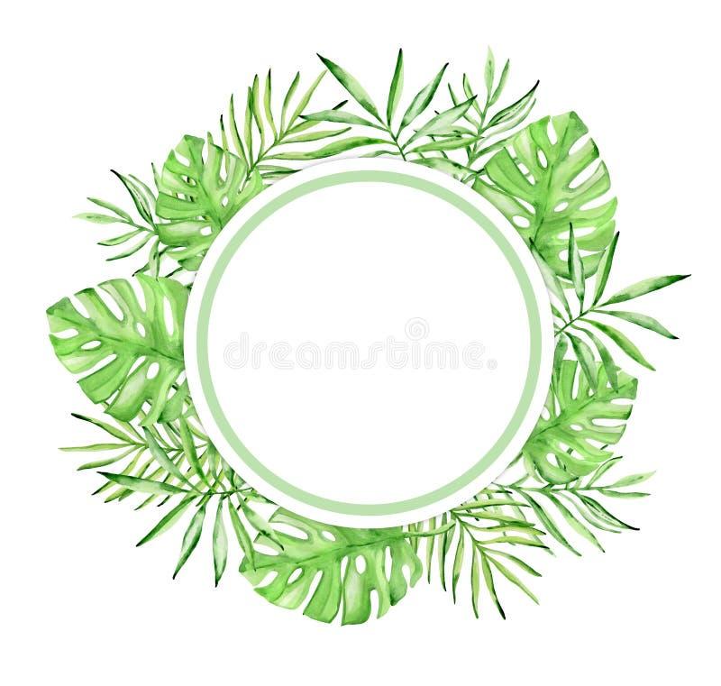 Στρογγυλό τροπικό floral πλαίσιο watercolor διανυσματική απεικόνιση