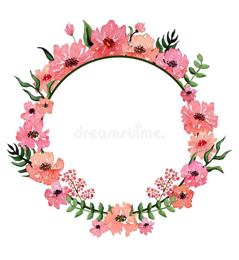 Στρογγυλό πλαίσιο με τα ρόδινα λουλούδια και βαθιά - πράσινα φύλλα διανυσματική απεικόνιση