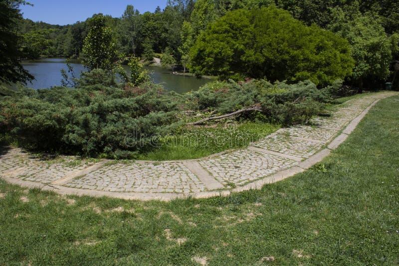Στρωμένοι ο Stone δρόμος και δέντρα από τη λίμνη στοκ εικόνες