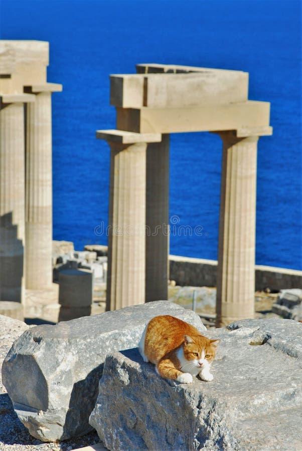 Στυλοβάτες ενός ναού στην ακρόπολη Lindos στοκ φωτογραφίες με δικαίωμα ελεύθερης χρήσης