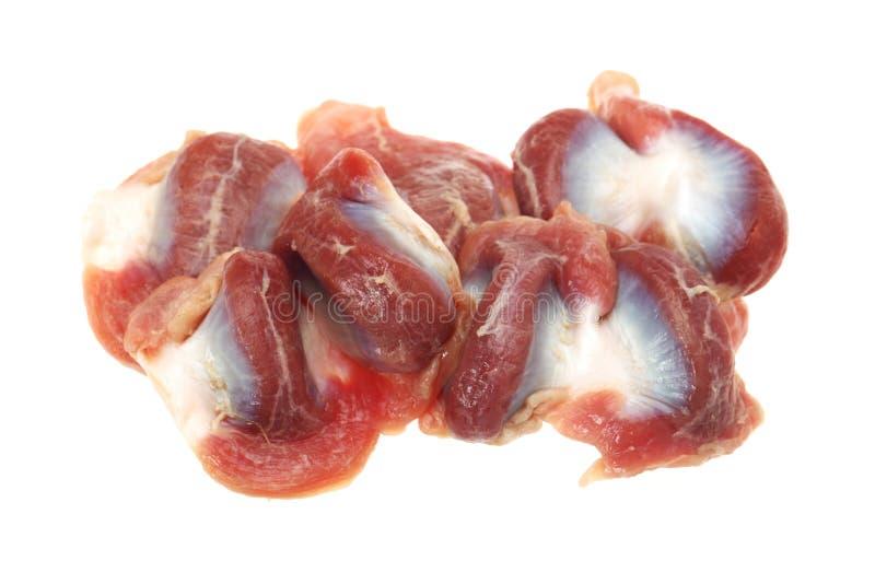 στόμαχοι κοτόπουλου στοκ φωτογραφία με δικαίωμα ελεύθερης χρήσης
