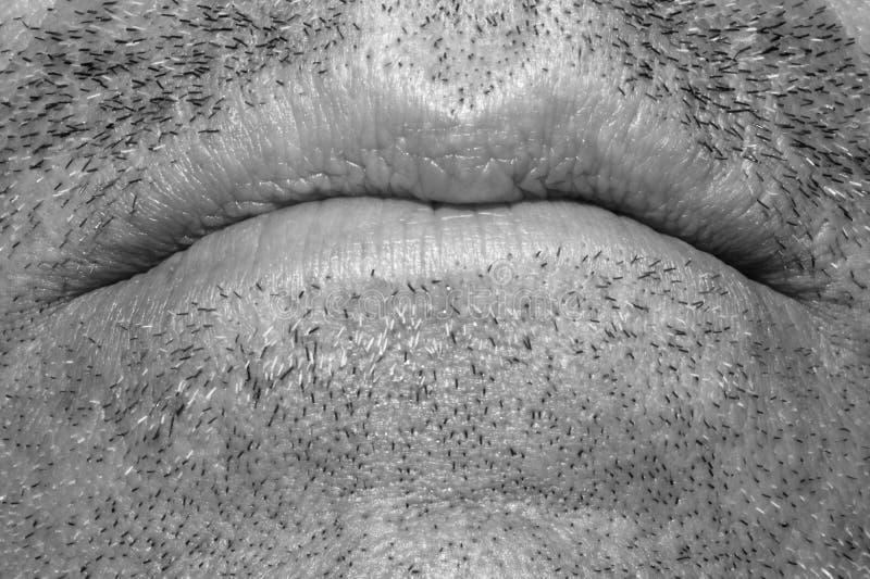 στόμα στοκ φωτογραφία