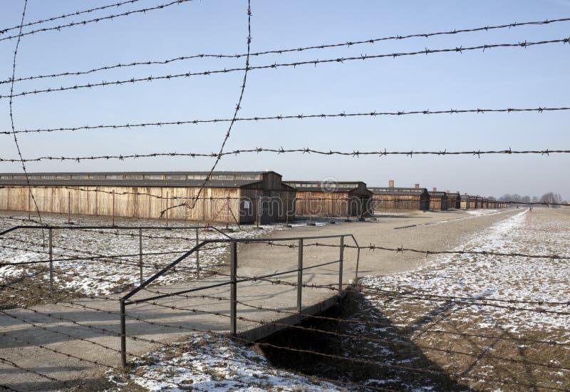 συγκέντρωση ναζιστική Πολωνία στρατόπεδων birkenau στοκ φωτογραφία με δικαίωμα ελεύθερης χρήσης
