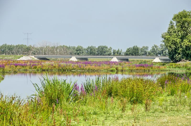 Συγκεκριμένη γέφυρα σε ένα ζωηρόχρωμο τοπίο στοκ φωτογραφία με δικαίωμα ελεύθερης χρήσης