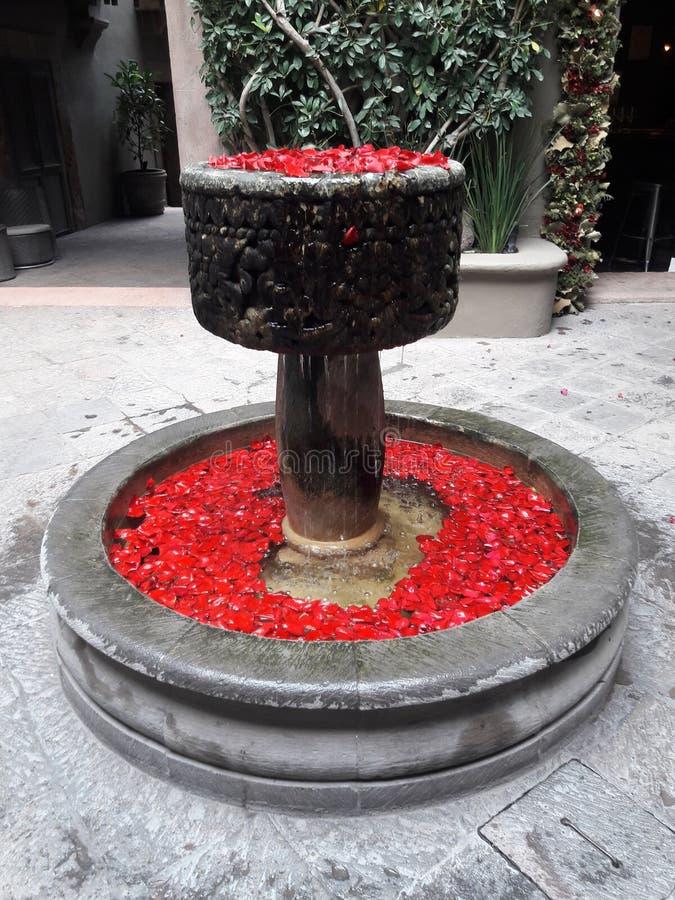 Συγκεκριμένη πηγή που γεμίζουν με τα κόκκινα ροδαλά πεντάλια στοκ εικόνα με δικαίωμα ελεύθερης χρήσης