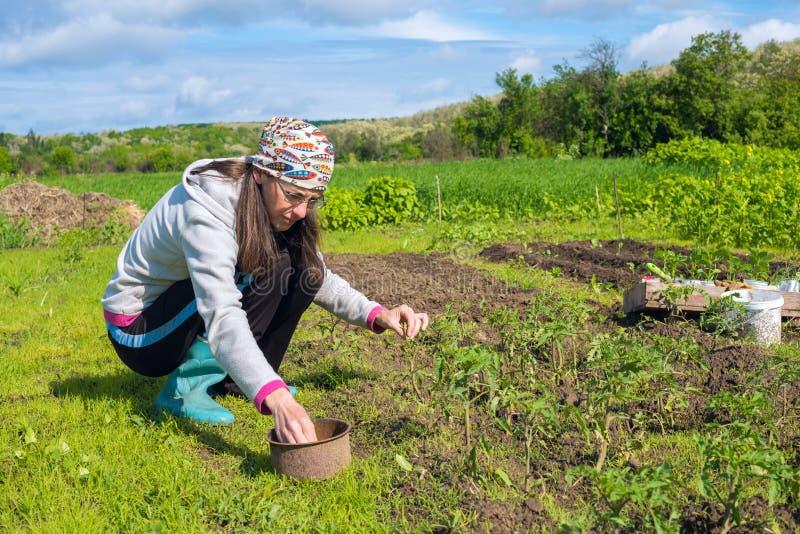 Συγκεντρωμένες εργασίες γυναικών στον κήπο στοκ εικόνες