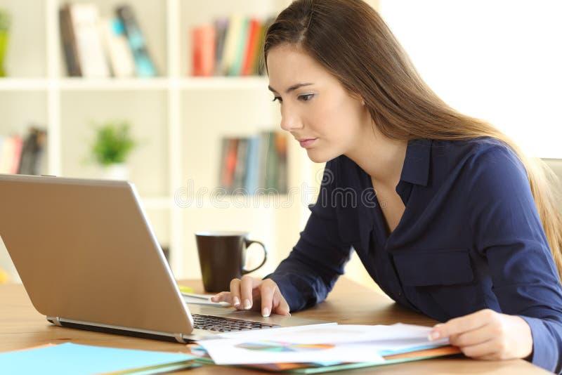 Συγκεντρωμένος μόνος - υιοθετημένη εργασία στο σπίτι στοκ φωτογραφία με δικαίωμα ελεύθερης χρήσης