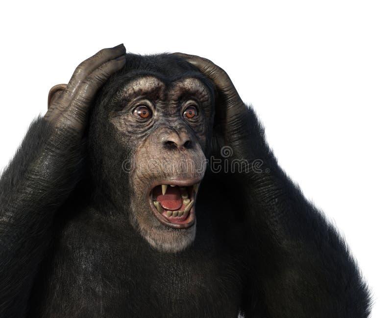 Συγκλονισμένος χιμπατζής διανυσματική απεικόνιση