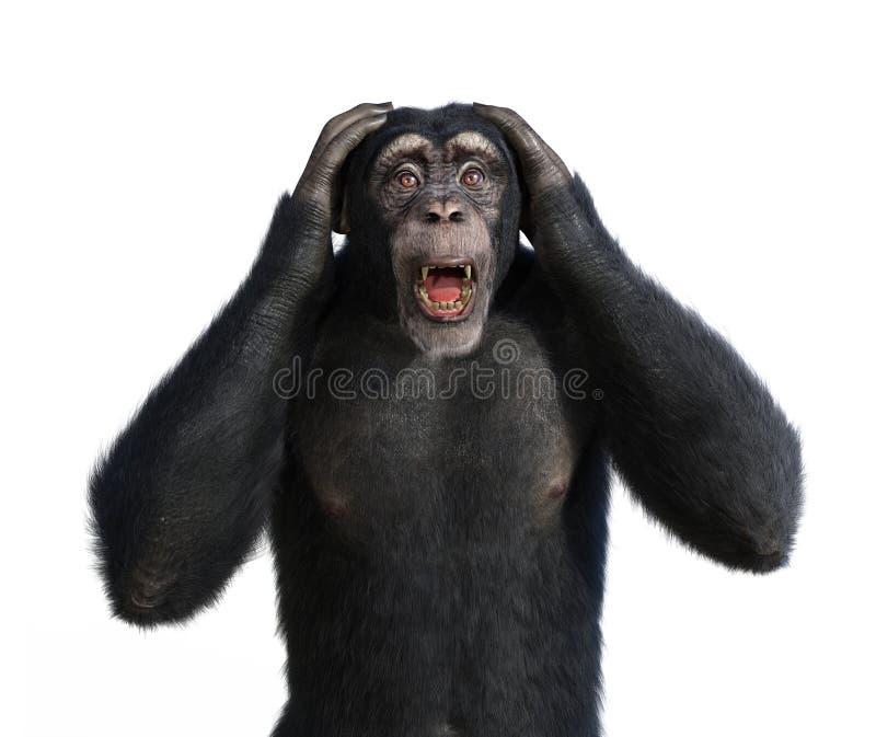 Συγκλονισμένος χιμπατζής απεικόνιση αποθεμάτων