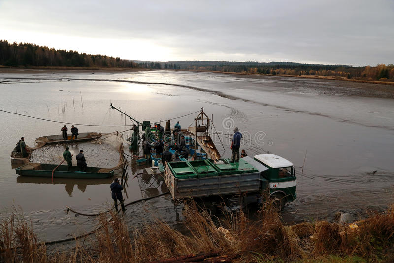 Συγκομίζοντας λίμνη στοκ φωτογραφία με δικαίωμα ελεύθερης χρήσης