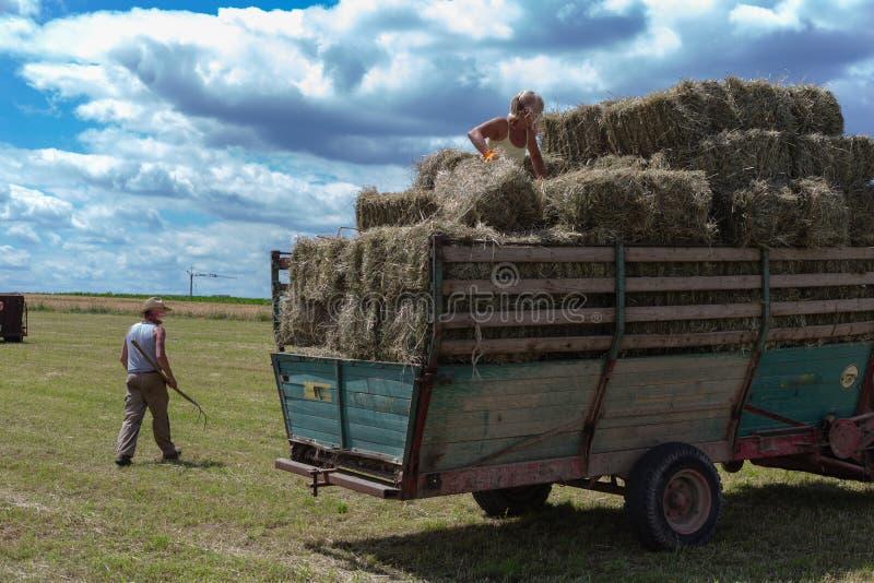 συγκομίζοντας τρακτέρ και αγρότης ρυμουλκών στοκ εικόνες