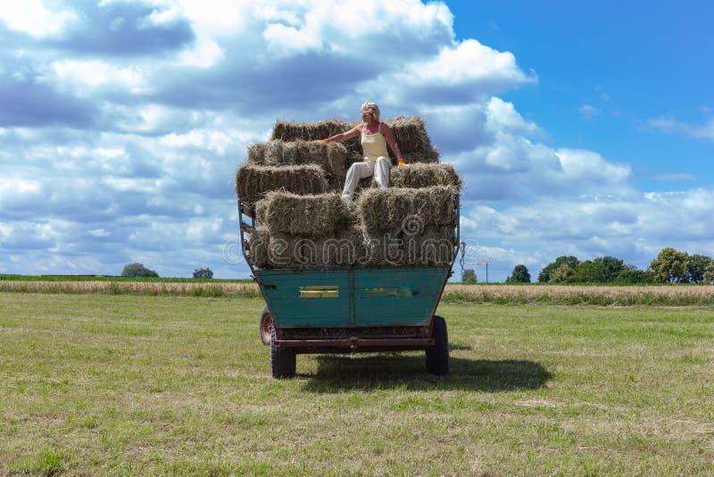 συγκομίζοντας τρακτέρ και αγρότης ρυμουλκών στοκ εικόνα