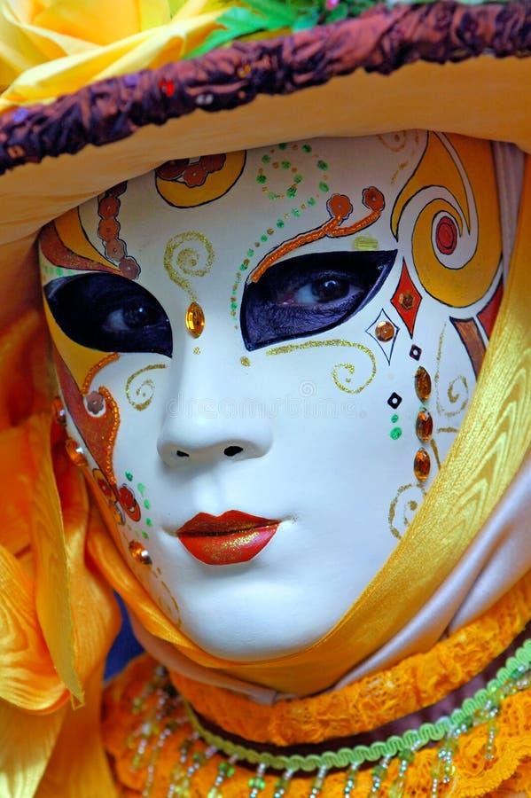 συγκομιδή Παρίσι σταφυλιών της Γαλλίας εορτασμού στοκ εικόνες