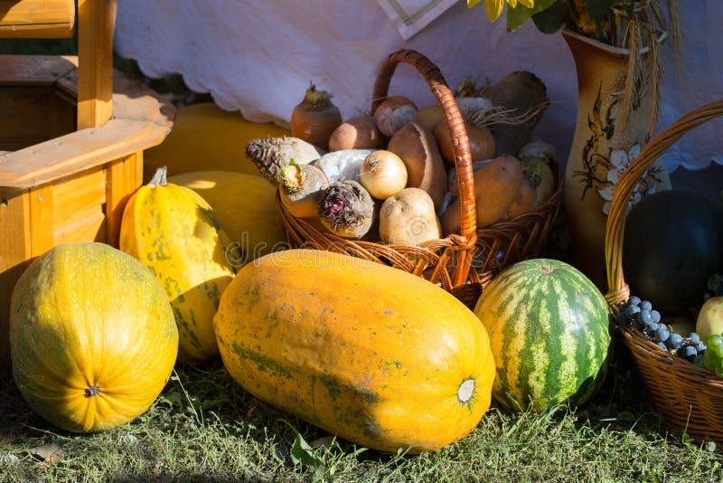 Συγκομιδή φθινοπώρου: κολοκύθα, καρπούζι, καλάθι με τα παντζάρια, carr στοκ φωτογραφία με δικαίωμα ελεύθερης χρήσης