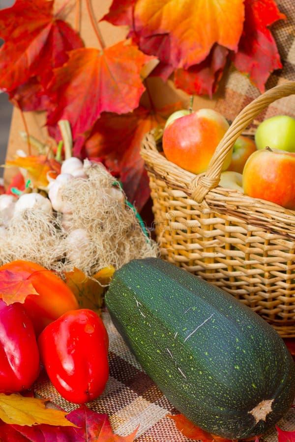 Συγκομιδή φθινοπώρου των λαχανικών στοκ φωτογραφία με δικαίωμα ελεύθερης χρήσης