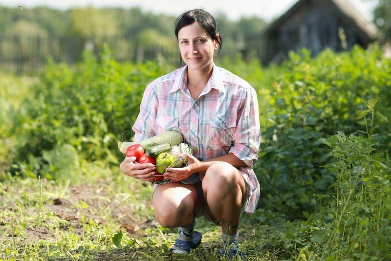 συγκομισμένα λαχανικά στοκ εικόνα με δικαίωμα ελεύθερης χρήσης