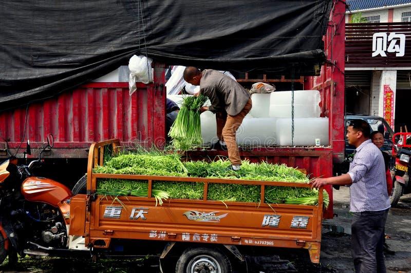 Pengzhou, Κίνα: Πράσινα σκόρδου φόρτωσης εργαζομένων στοκ φωτογραφίες με δικαίωμα ελεύθερης χρήσης