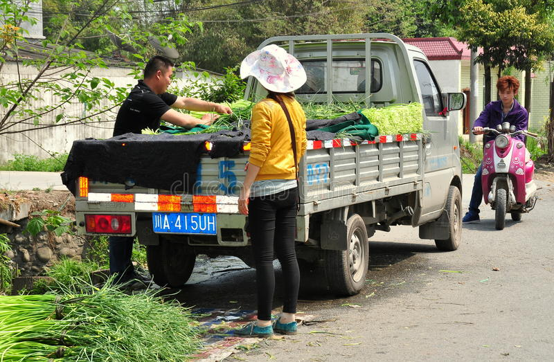 Pengzhou, Κίνα: Αγρότες που φορτώνουν τα πράσινα σκόρδου στοκ φωτογραφία με δικαίωμα ελεύθερης χρήσης
