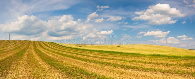 Συγκομισμένος κενός τομέας στους λόφους στοκ φωτογραφίες με δικαίωμα ελεύθερης χρήσης
