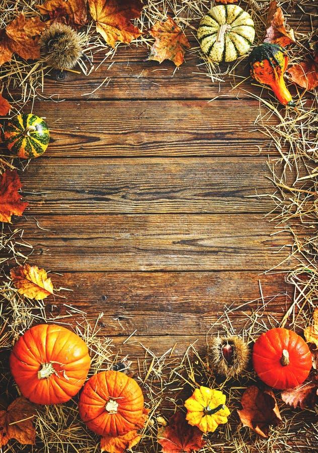 Συγκομιδή ή υπόβαθρο ημέρας των ευχαριστιών με τις κολοκύθες και το άχυρο στοκ φωτογραφία