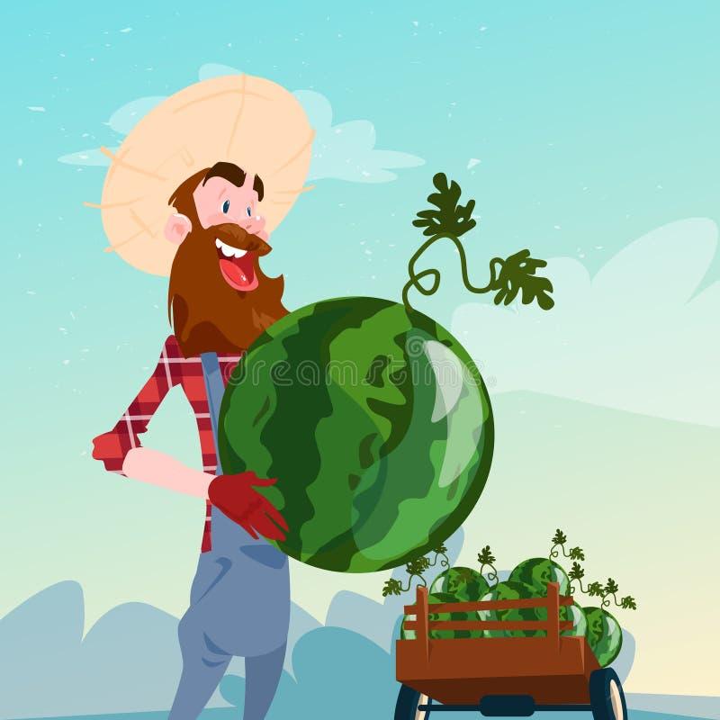 Συγκομιδή καρπουζιών λαβής της Farmer διανυσματική απεικόνιση