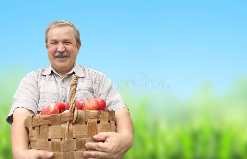 Συγκομιδή μήλα στοκ εικόνες