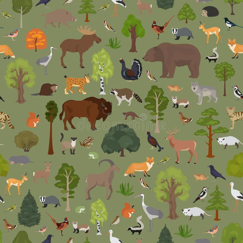 Συγκρατημένο δασικό και μικτό δασικό biome πλατύφυλλων Επίγειος παγκόσμιος χάρτης οικοσυστήματος Γραφικό σχέδιο ζώων, πουλιών και απεικόνιση αποθεμάτων
