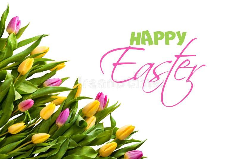 Συγχαρητήρια σε Πάσχα Ακόμα ζωή των τουλιπών και των αυγών στοκ φωτογραφίες με δικαίωμα ελεύθερης χρήσης