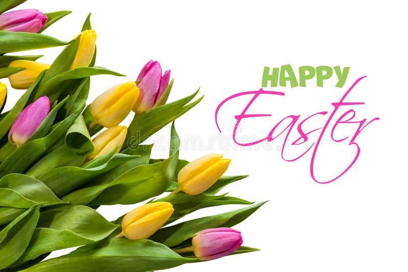 Συγχαρητήρια σε Πάσχα Ακόμα ζωή των τουλιπών και των αυγών στοκ εικόνες