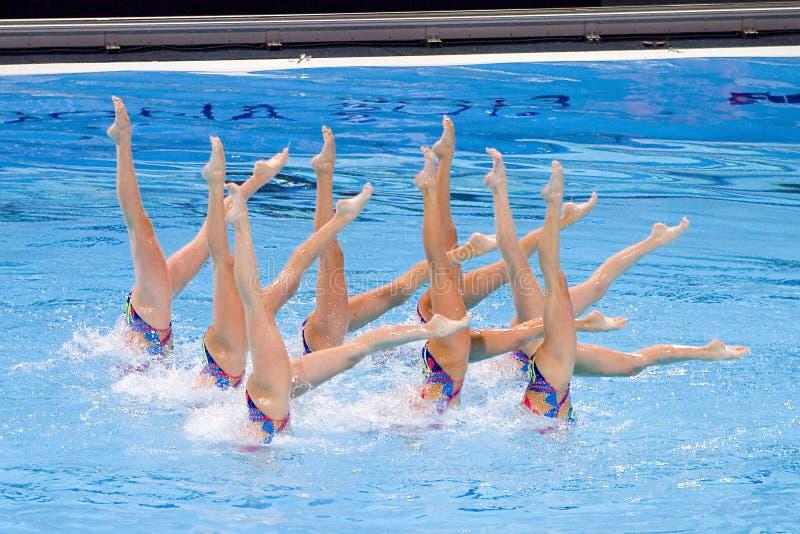 Συγχρονισμένη κολύμβηση - Ουκρανία στοκ εικόνες με δικαίωμα ελεύθερης χρήσης