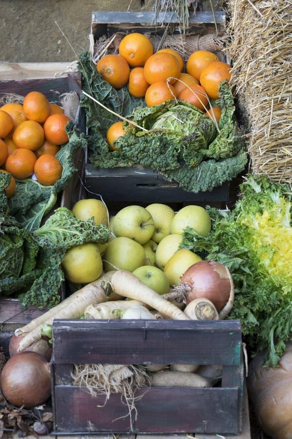 Συλλέξτε τα φρούτα και λαχανικά στοκ φωτογραφίες